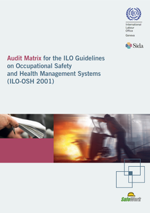 audit-matrix-ilo